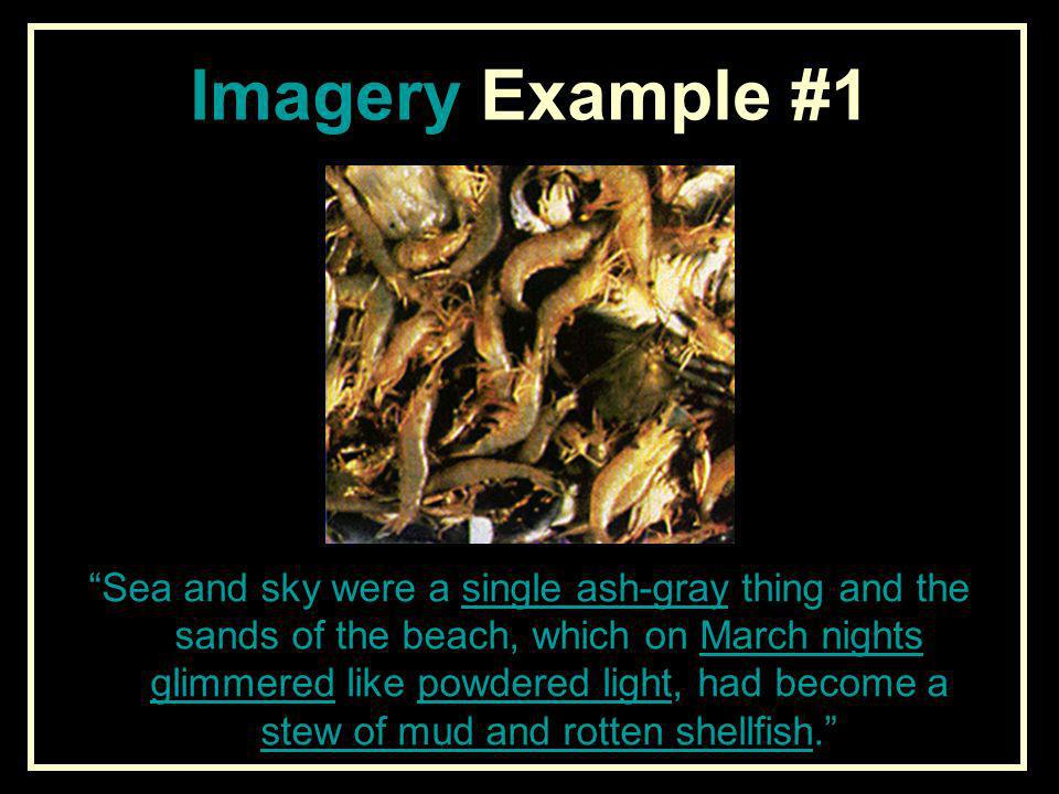 Imagery Example #1 Sea and sky were a single ash-gray thing and the sands of the beach, which on March nights glimmered like powdered light, had becom