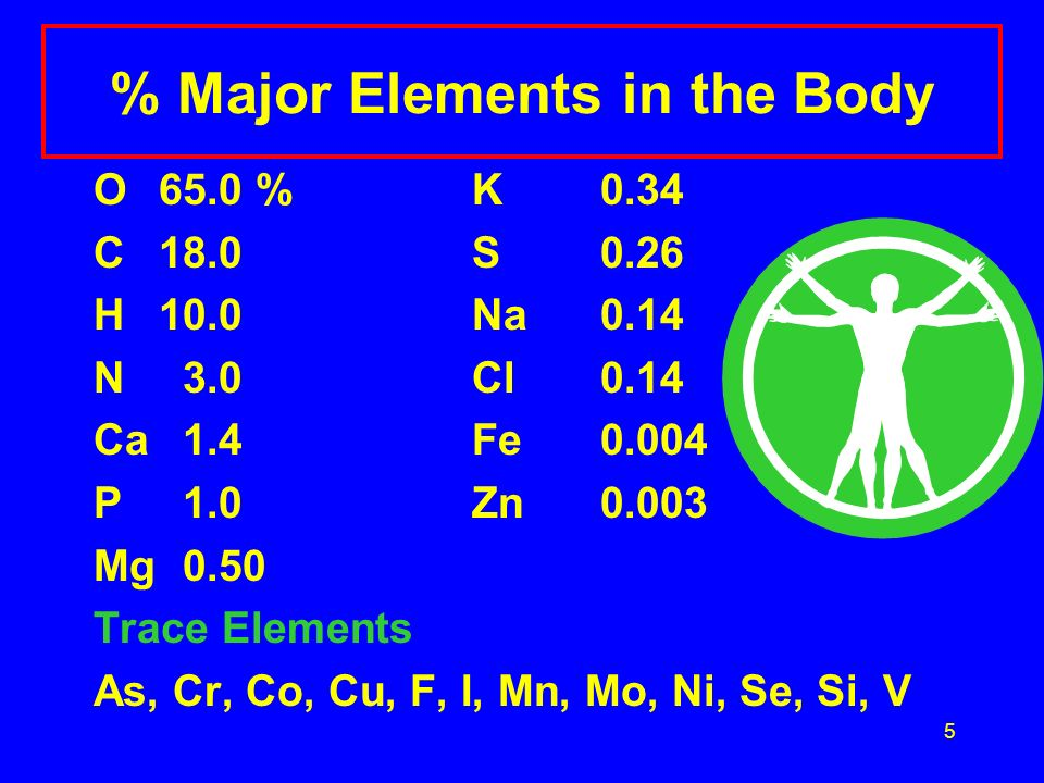 5 % Major Elements in the Body O65.0 %K 0.34 C18.0S 0.26 H10.0Na 0.14 N 3.0Cl 0.14 Ca 1.4Fe 0.004 P 1.0 Zn 0.003 Mg 0.50 Trace Elements As, Cr, Co, Cu, F, I, Mn, Mo, Ni, Se, Si, V