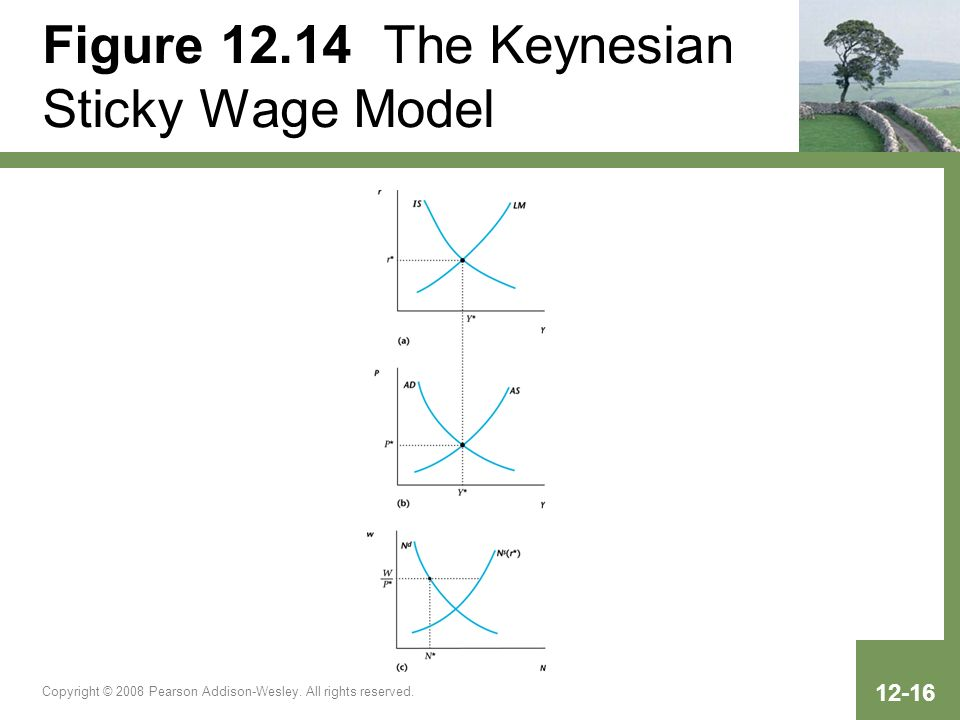 Copyright © 2008 Pearson Addison-Wesley. All rights reserved. 12-16 Figure 12.14 The Keynesian Sticky Wage Model