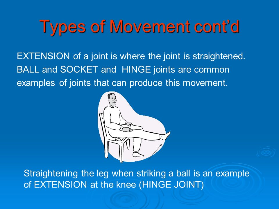 Types of Movement contd EXTENSION of a joint is where the joint is straightened. BALL and SOCKET and HINGE joints are common examples of joints that c