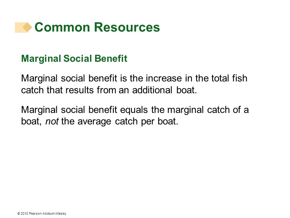 © 2010 Pearson Addison-Wesley Marginal Social Benefit Marginal social benefit is the increase in the total fish catch that results from an additional