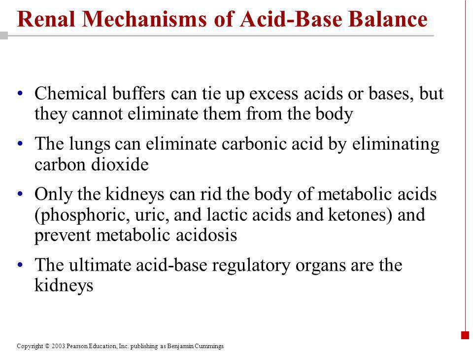 Copyright © 2003 Pearson Education, Inc. publishing as Benjamin Cummings Renal Mechanisms of Acid-Base Balance Chemical buffers can tie up excess acid
