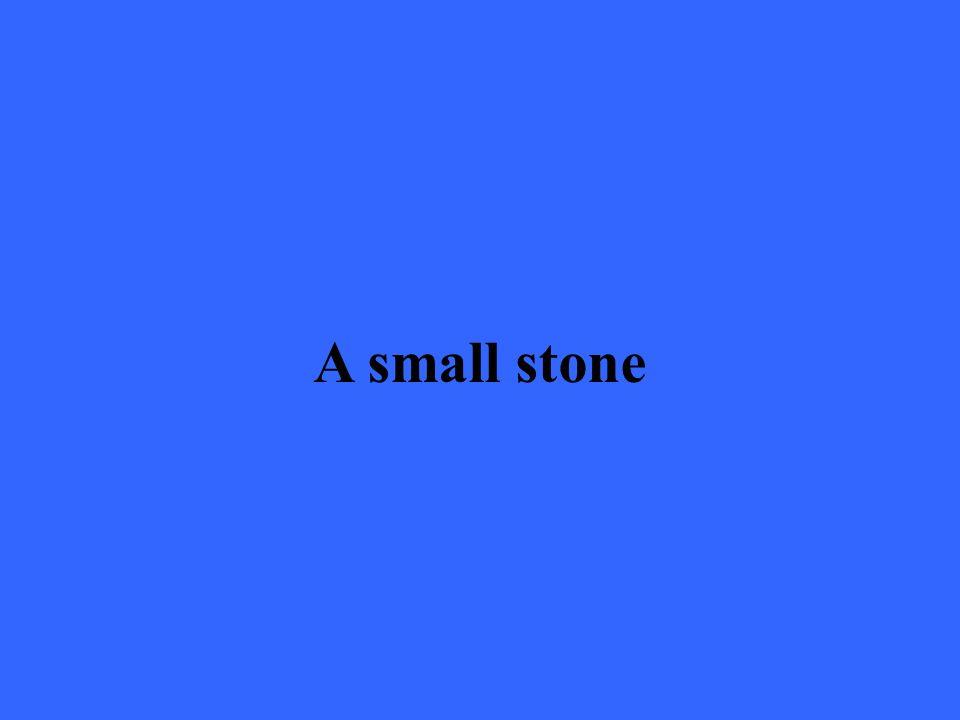 A small stone