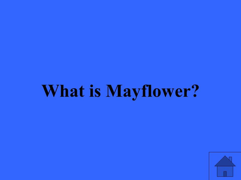 What is Mayflower?