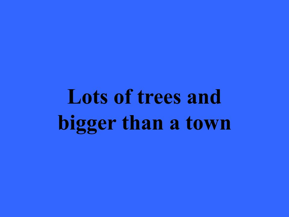 Lots of trees and bigger than a town