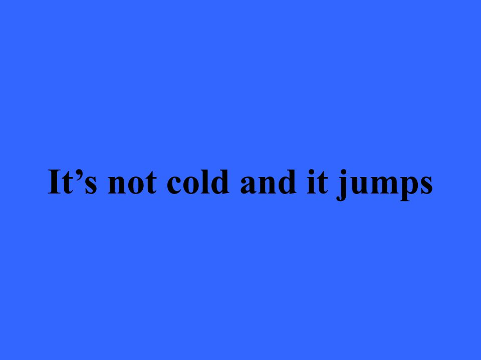 Its not cold and it jumps