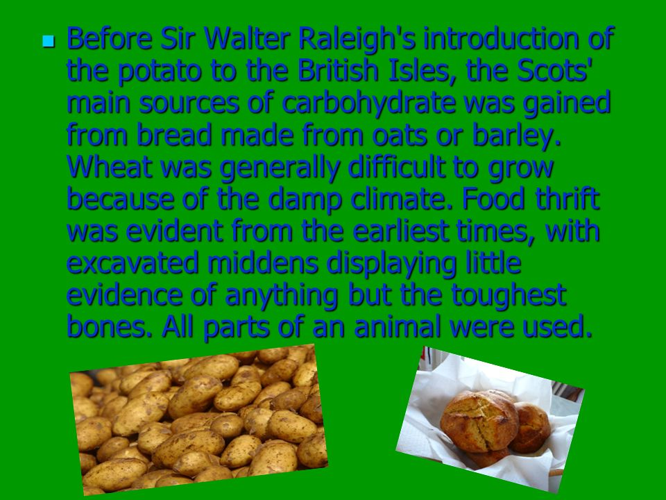 Before Sir Walter Raleigh's introduction of the potato to the British Isles, the Scots' main sources of carbohydrate was gained from bread made from o