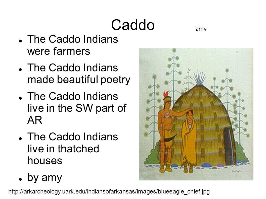 Caddo The Caddo Indians were farmers The Caddo Indians made beautiful poetry The Caddo Indians live in the SW part of AR The Caddo Indians live in tha