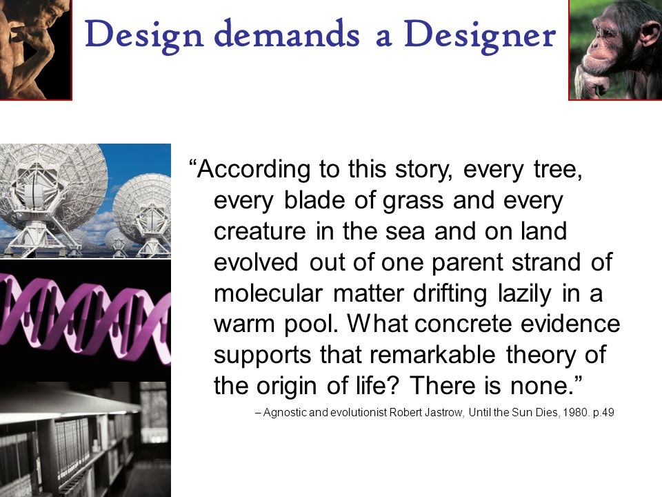 Design demands a Designer According to this story, every tree, every blade of grass and every creature in the sea and on land evolved out of one parent strand of molecular matter drifting lazily in a warm pool.