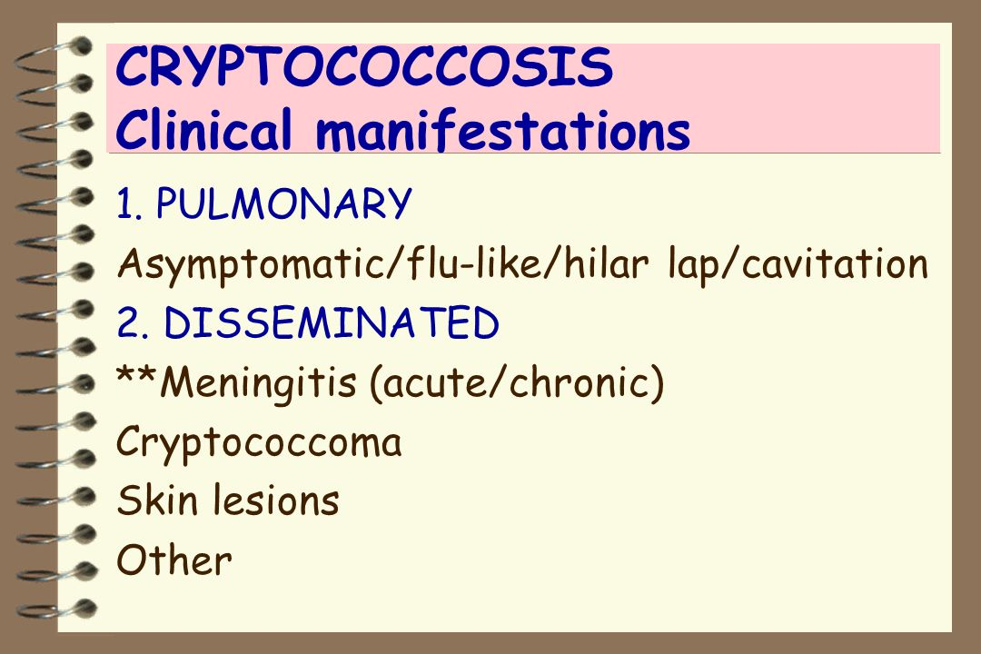 CRYPTOCOCCOSIS Clinical manifestations 1. PULMONARY Asymptomatic/flu-like/hilar lap/cavitation 2. DISSEMINATED **Meningitis (acute/chronic) Cryptococc