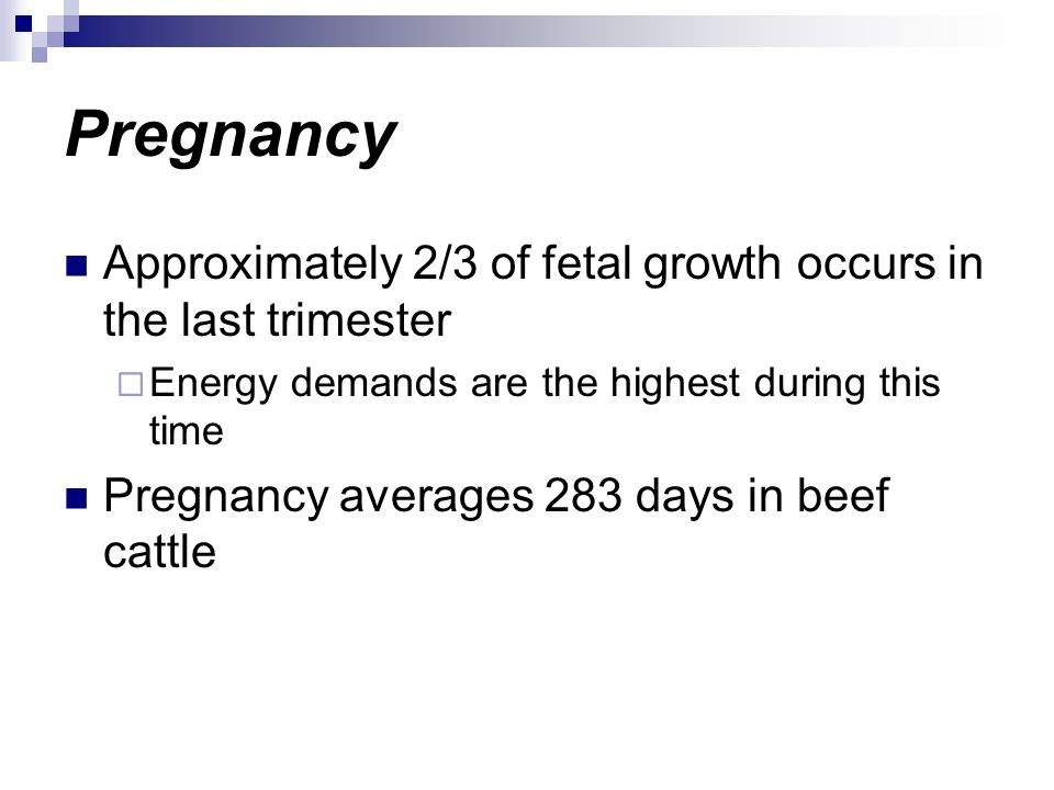 Pregnancy Approximately 2/3 of fetal growth occurs in the last trimester Energy demands are the highest during this time Pregnancy averages 283 days i
