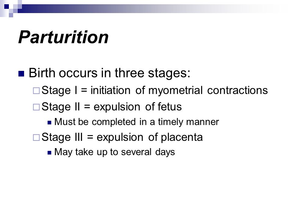 Parturition Birth occurs in three stages: Stage I = initiation of myometrial contractions Stage II = expulsion of fetus Must be completed in a timely