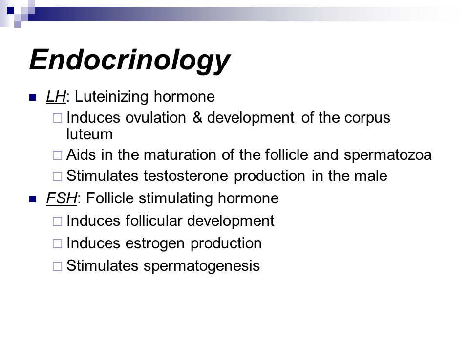 Endocrinology LH: Luteinizing hormone Induces ovulation & development of the corpus luteum Aids in the maturation of the follicle and spermatozoa Stim