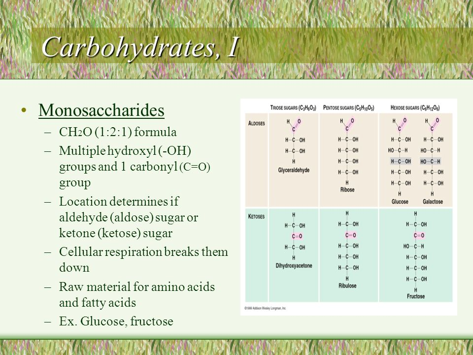 Carbohydrates, I Monosaccharides –CH 2 O (1:2:1) formula –Multiple hydroxyl (-OH) groups and 1 carbonyl (C=O) group –Location determines if aldehyde (