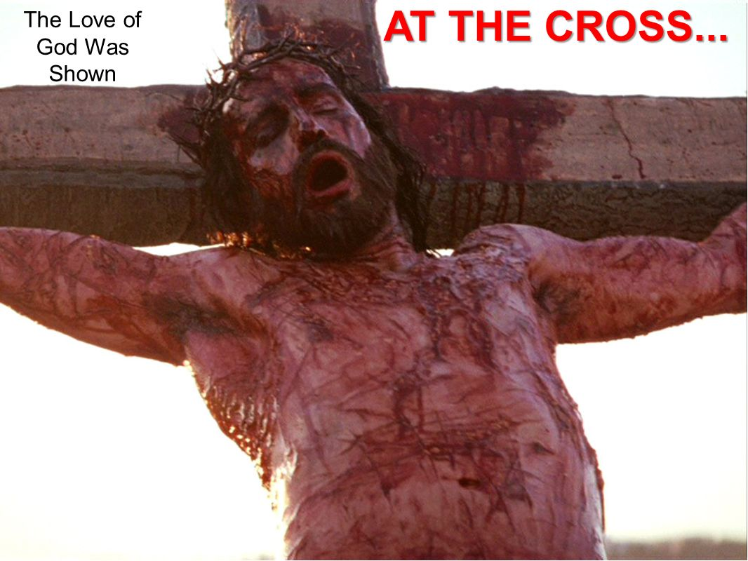 The Love of God Was Shown