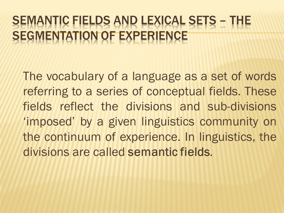 The vocabulary of a language as a set of words referring to a series of conceptual fields.