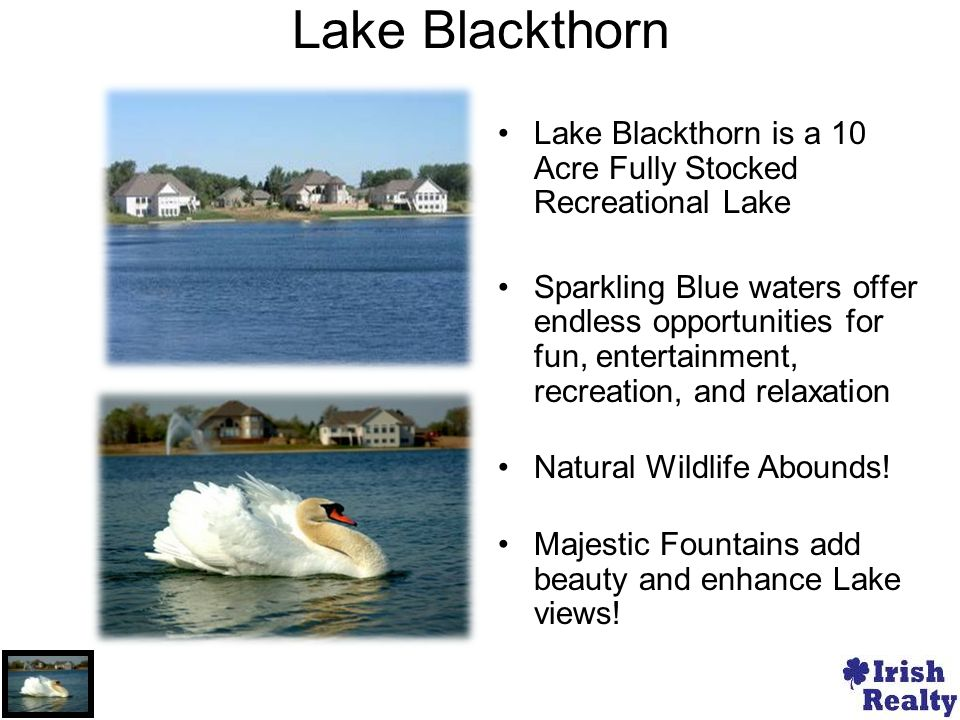 Lake Blackthorn Lake Blackthorn is a 10 Acre Fully Stocked Recreational Lake Sparkling Blue waters offer endless opportunities for fun, entertainment, recreation, and relaxation Natural Wildlife Abounds.