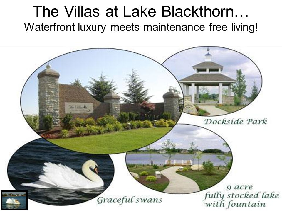 The Villas at Lake Blackthorn… Waterfront luxury meets maintenance free living!