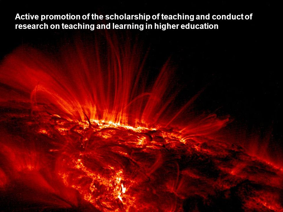 Active promotion of the scholarship of teaching and conduct of research on teaching and learning in higher education