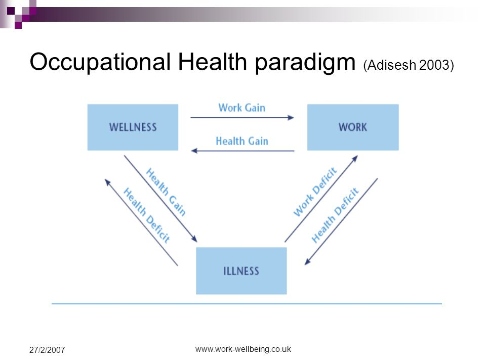 www.work-wellbeing.co.uk 27/2/2007 Occupational Health paradigm (Adisesh 2003)