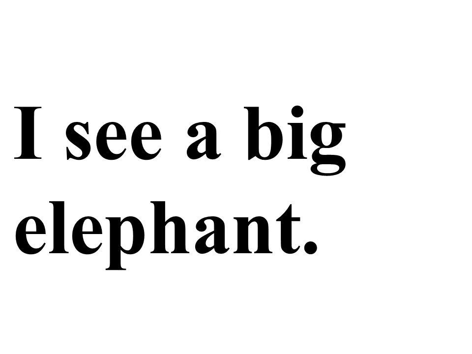 I see a big elephant.