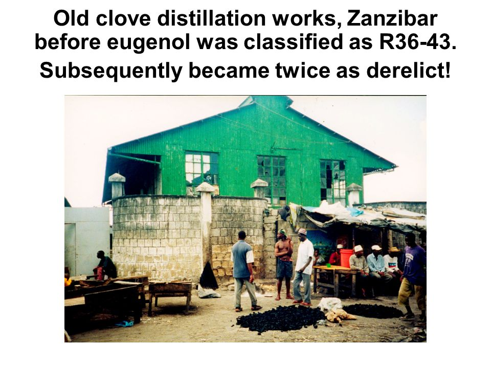 Old clove distillation works, Zanzibar before eugenol was classified as R36-43. Subsequently became twice as derelict!