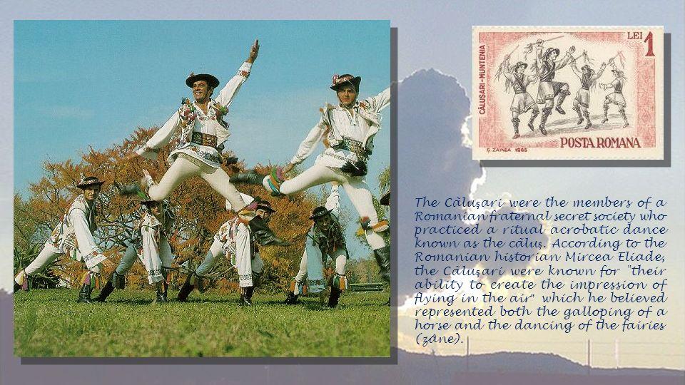 The Cãlu ş ari were the members of a Romanian fraternal secret society who practiced a ritual acrobatic dance known as the cãlu ş.