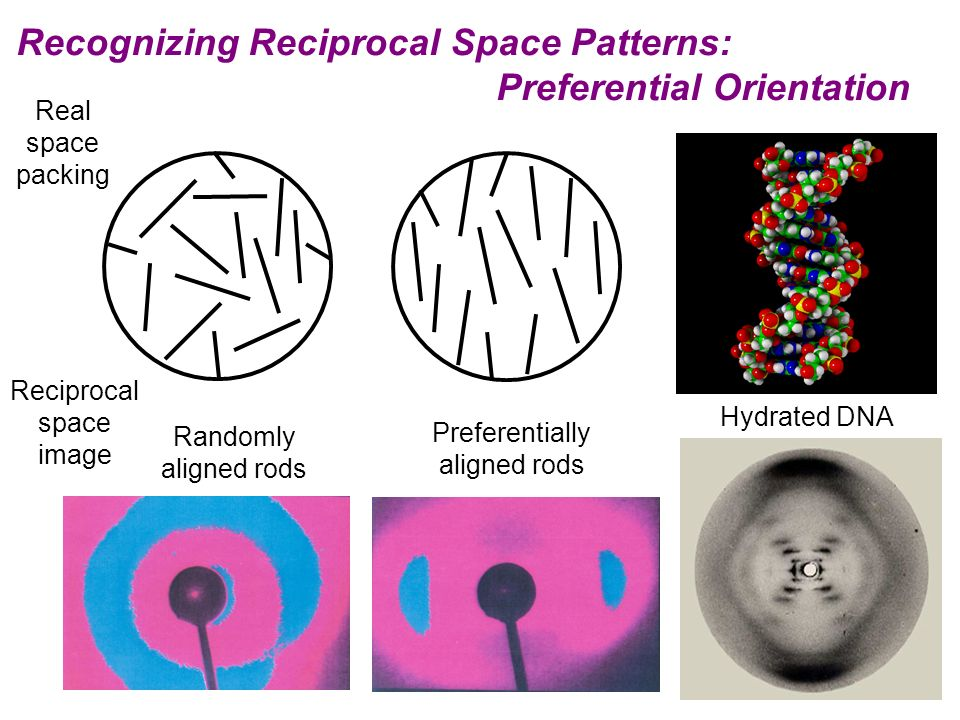 Recognizing Reciprocal Space Patterns: Preferential Orientation Real space packing Reciprocal space image Randomly aligned rods Preferentially aligned