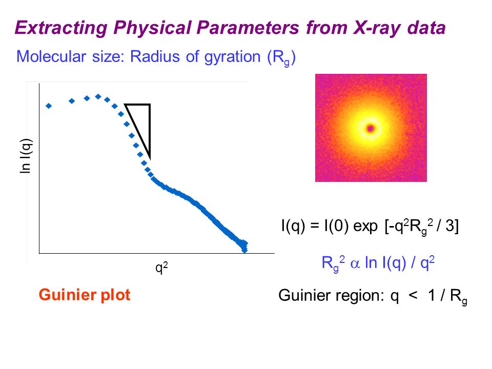 Extracting Physical Parameters from X-ray data Molecular size: Radius of gyration (R g ) Guinier plot R g 2 ln I(q) / q 2 I(q) = I(0) exp [-q 2 R g 2