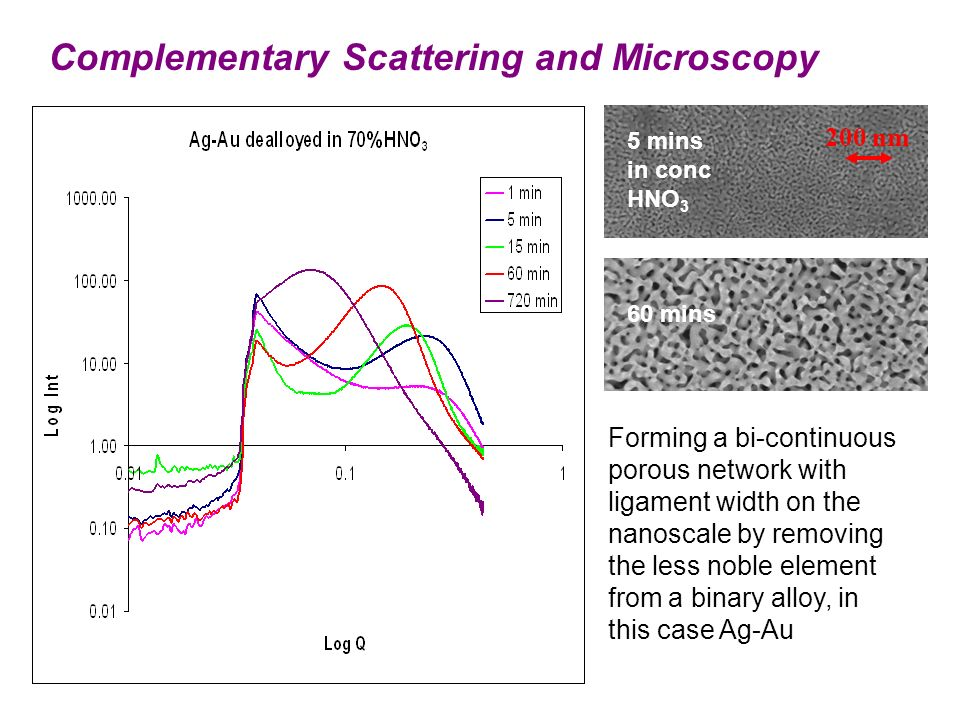 Forming a bi-continuous porous network with ligament width on the nanoscale by removing the less noble element from a binary alloy, in this case Ag-Au