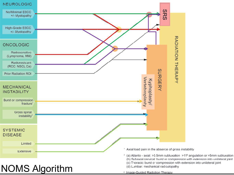 NOMS Algorithm SRS