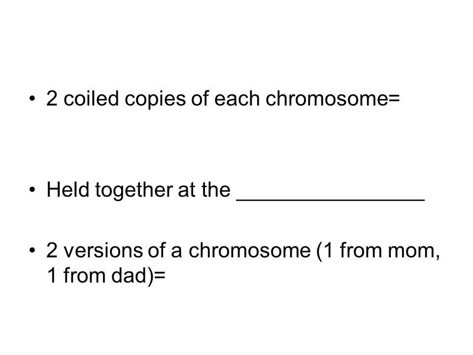 2 coiled copies of each chromosome= Held together at the ________________ 2 versions of a chromosome (1 from mom, 1 from dad)=