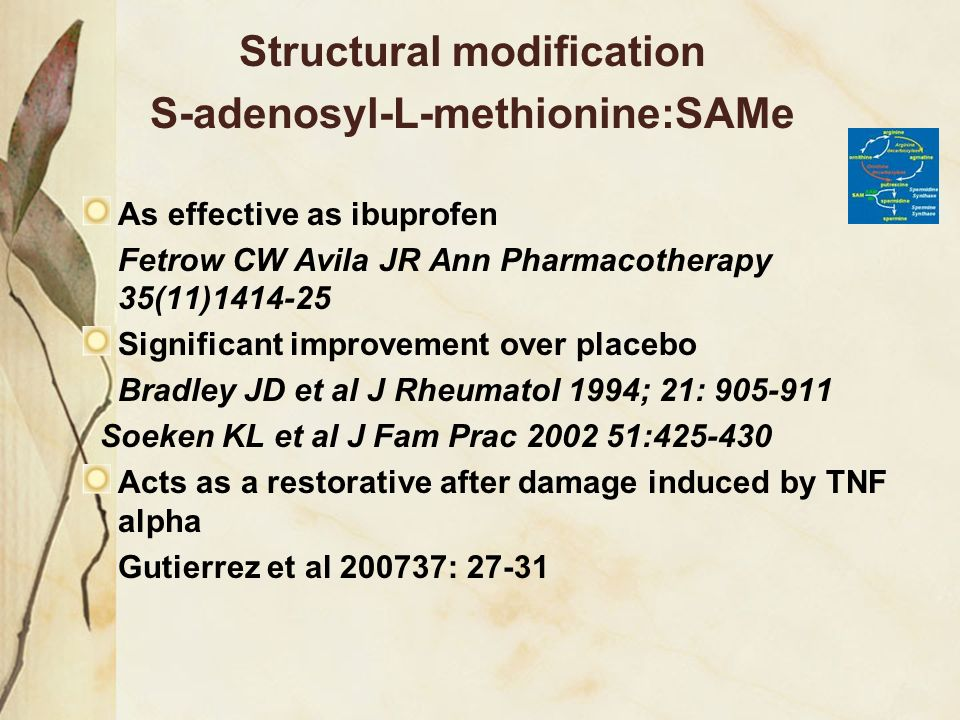 Structural modification S-adenosyl-L-methionine:SAMe As effective as ibuprofen Fetrow CW Avila JR Ann Pharmacotherapy 35(11)1414-25 Significant improv