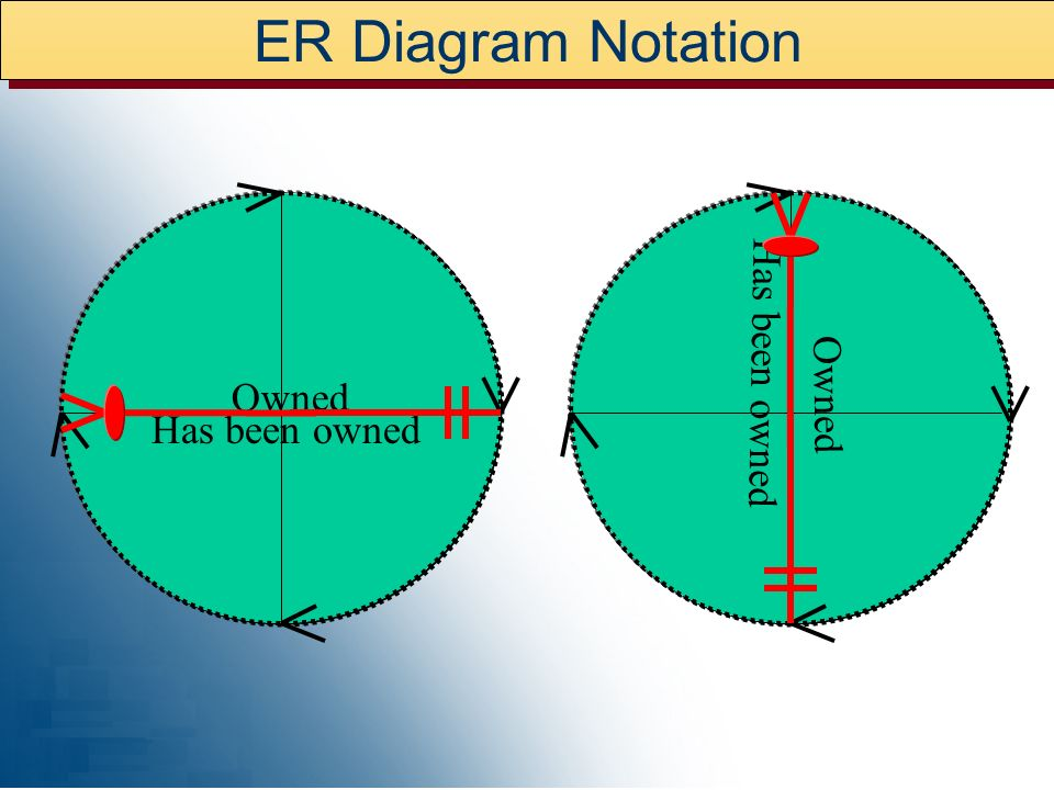 ER Diagram Customer Customer Rep Is represented by Represents Order Placed Was Placed By Employee Was taken by Took Order Item Contains Was ordered on