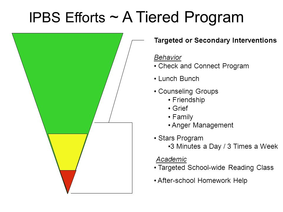 Targeted or Secondary Interventions Behavior Check and Connect Program Lunch Bunch Counseling Groups Friendship Grief Family Anger Management Stars Pr