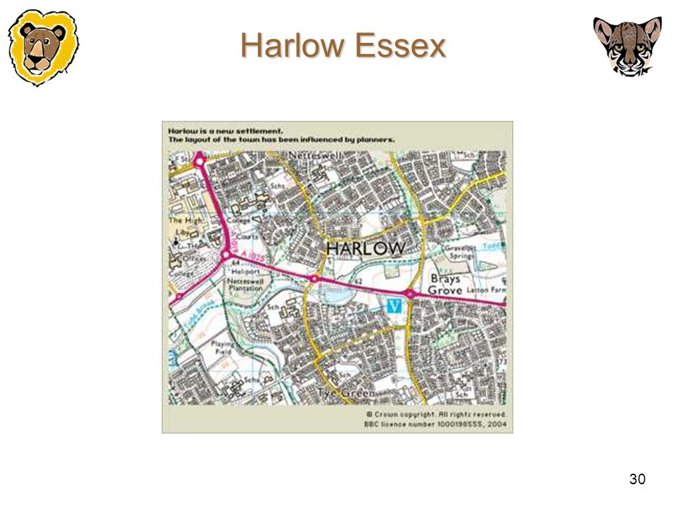 30 Harlow Essex