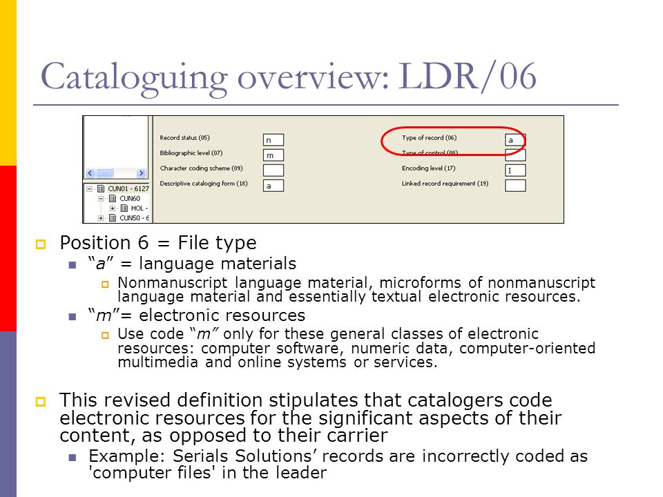 Cataloguing overview: LDR/06 Position 6 = File type a = language materials Nonmanuscript language material, microforms of nonmanuscript language mater