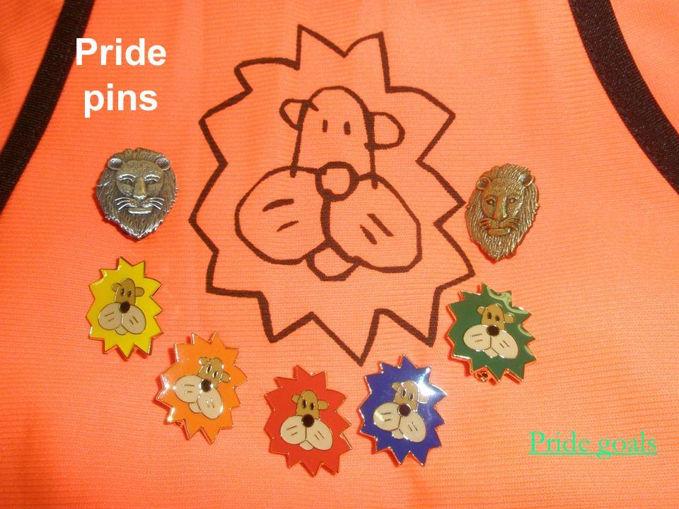 Pride pins Pride goals