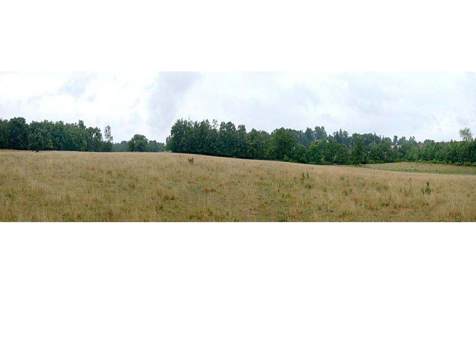 Steven s Knoll Saddle between Culp s Hill & Cemetery Hill Evergreen Cemetery