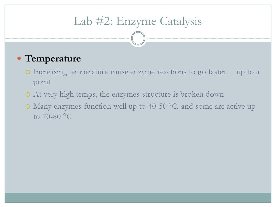 Lab #2: Enzyme Catalysis Temperature Increasing temperature cause enzyme reactions to go faster… up to a point At very high temps, the enzymes structure is broken down Many enzymes function well up to 40-50 C, and some are active up to 70-80 C
