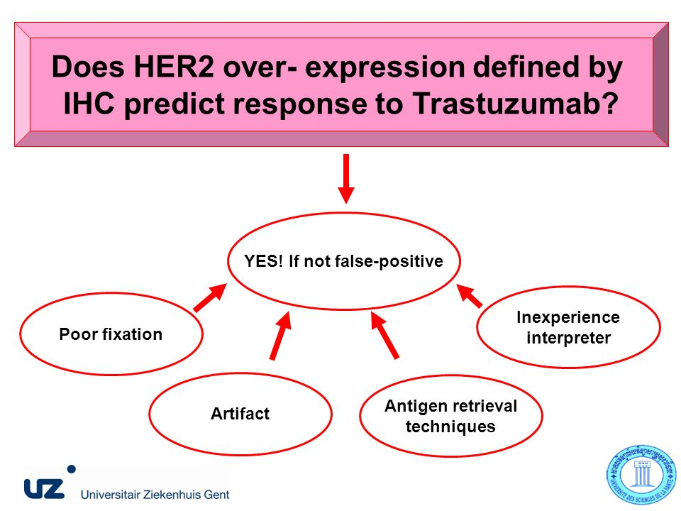 Does HER2 over- expression defined by IHC predict response to Trastuzumab.