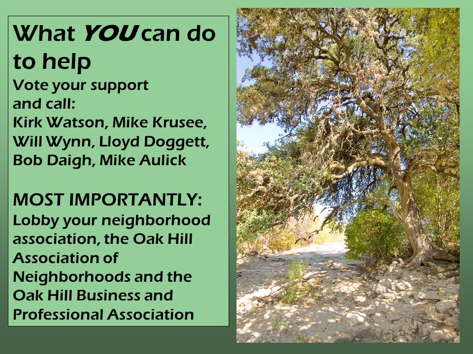 What YOU can do to help Vote your support and call: Kirk Watson, Mike Krusee, Will Wynn, Lloyd Doggett, Bob Daigh, Mike Aulick MOST IMPORTANTLY: Lobby your neighborhood association, the Oak Hill Association of Neighborhoods and the Oak Hill Business and Professional Association