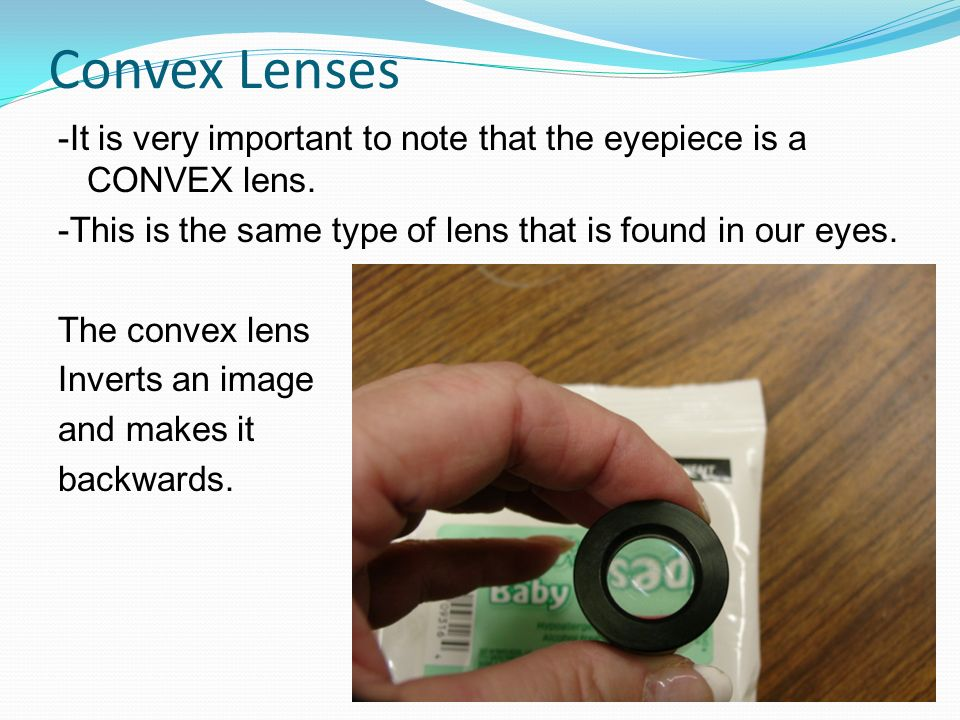 Convex Lenses -It is very important to note that the eyepiece is a CONVEX lens. -This is the same type of lens that is found in our eyes. The convex l