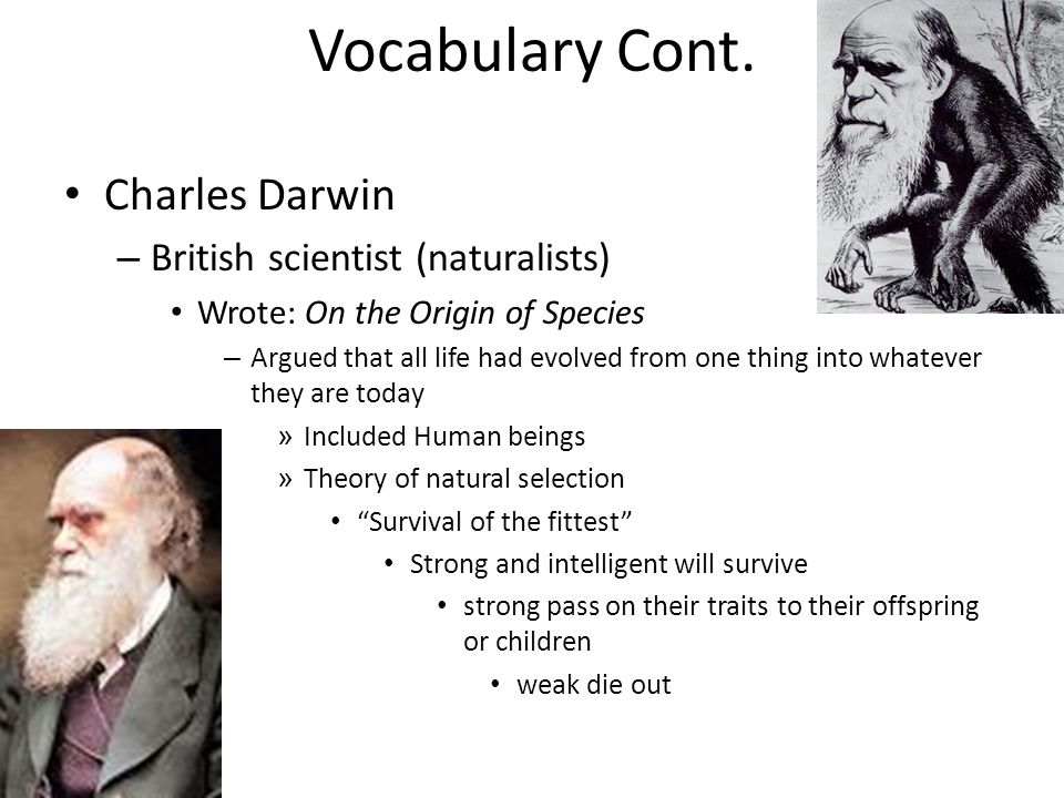 Vocabulary Cont. Charles Darwin – British scientist (naturalists) Wrote: On the Origin of Species – Argued that all life had evolved from one thing in