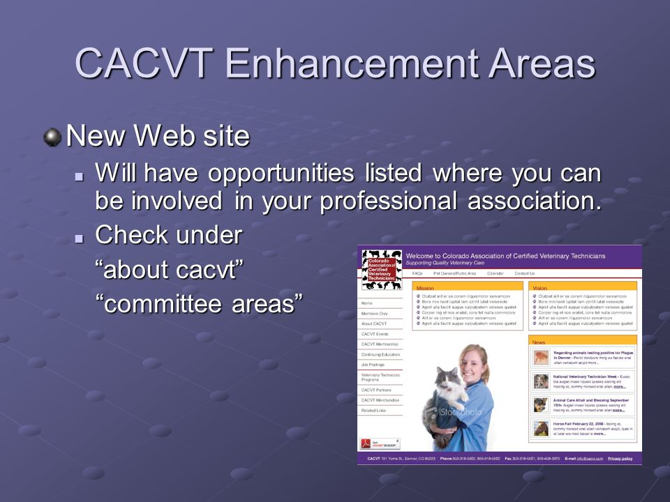 CACVT Enhancement Areas New Web site Will have opportunities listed where you can be involved in your professional association. Will have opportunitie