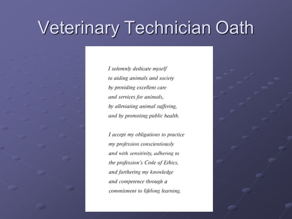 Veterinary Technician Oath