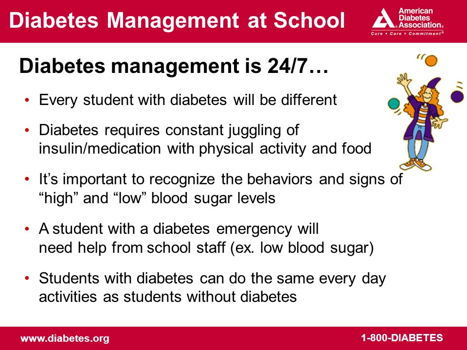 www.diabetes.org 1-800-DIABETES Diabetes Information For More Information: Visit www.diabetes.org/schools Visit www.diabetes.org/safeatschool Download the following free tools: –NDEPs Helping the Student with Diabetes Succeed: A Guide for School Personnel –ADAs Diabetes Care Tasks at School: What Key Personnel Need to Know Visit www.diabetes.org/schoolwalk for free lesson plans about diabetes