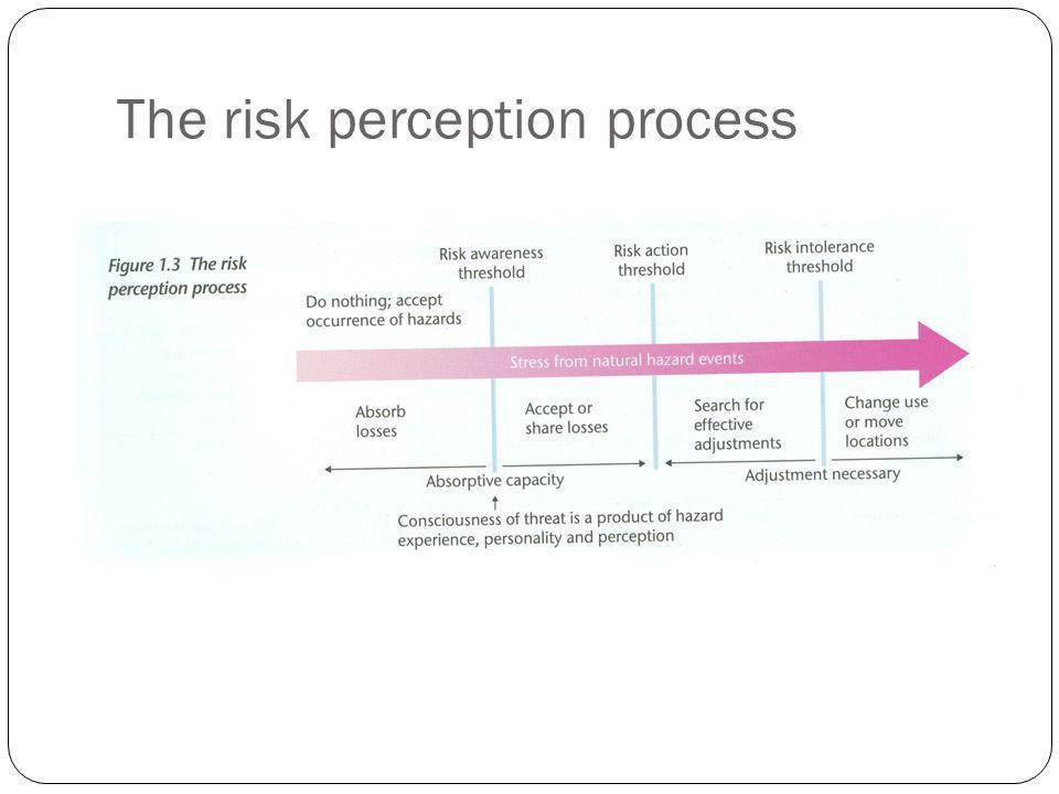 The risk perception process