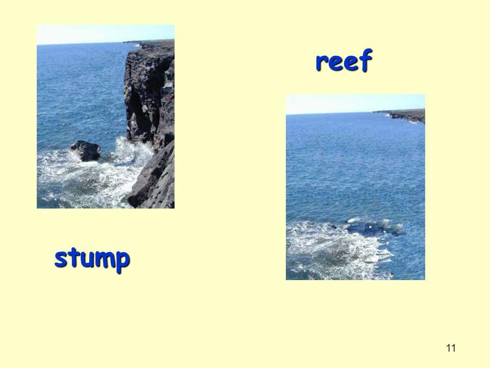 11 stump reef