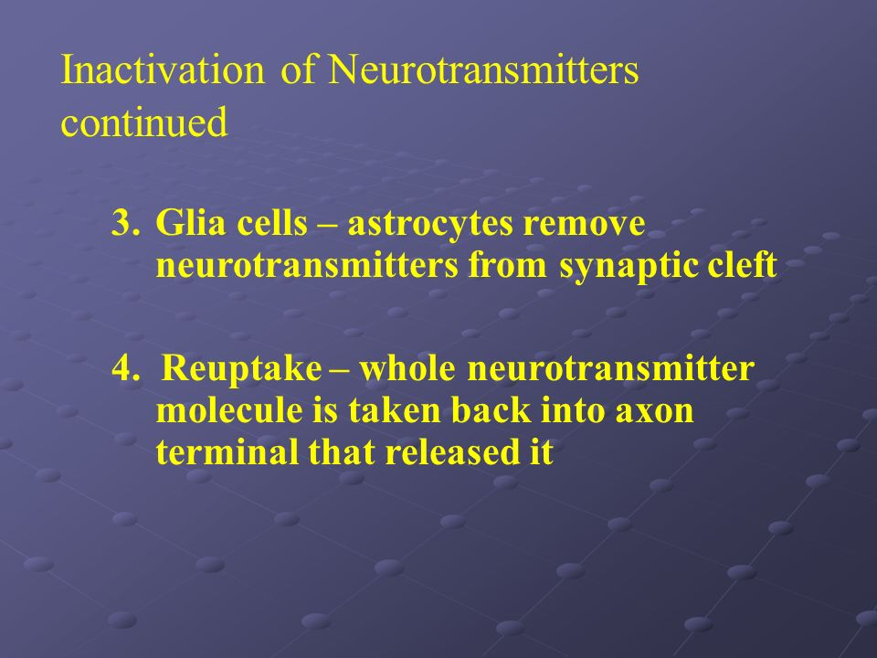 3.Glia cells – astrocytes remove neurotransmitters from synaptic cleft 4. Reuptake – whole neurotransmitter molecule is taken back into axon terminal